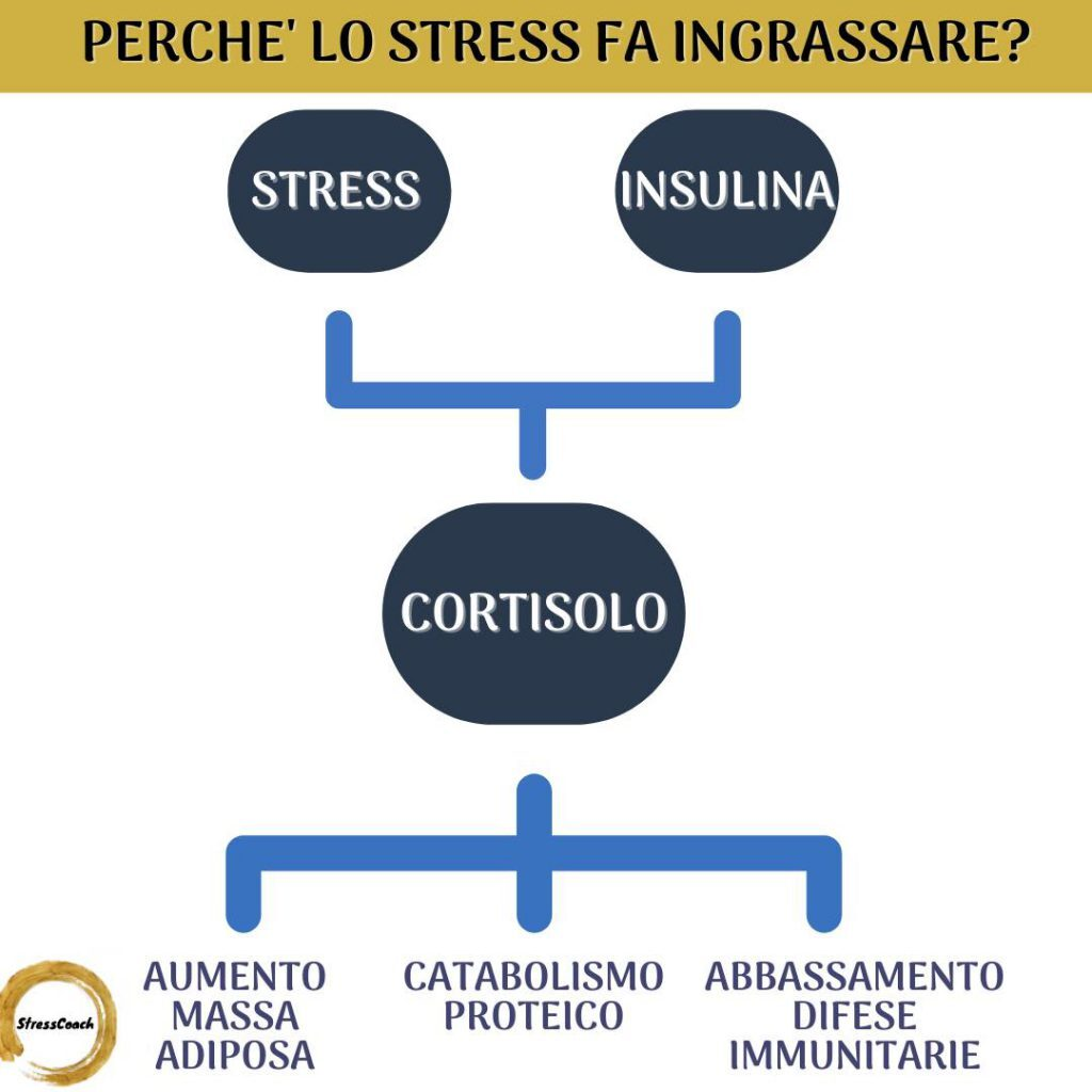 perchè lo stress fa ingrassare